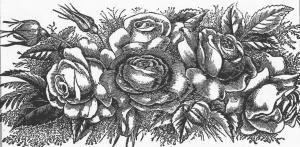 Floral design 1891
