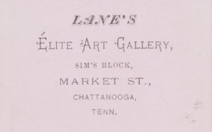 Lane's Elite Art Gallery Chattanooga cdv back